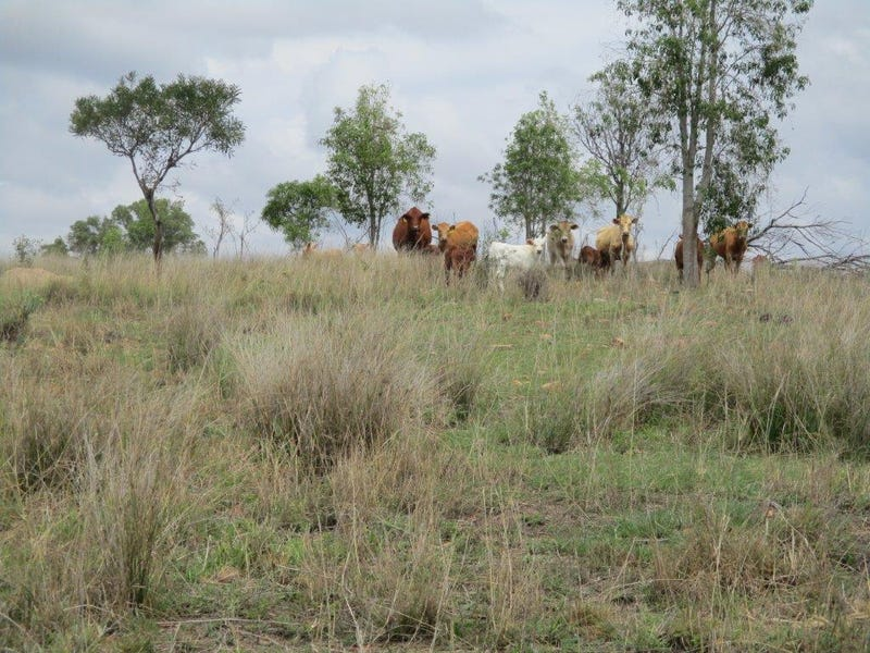 640 ACRES CATTLE PROPERTY, Kumbia, Qld 4610