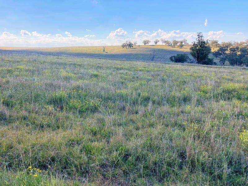 929 FLAGGS ROAD, Merriwa, NSW 2329