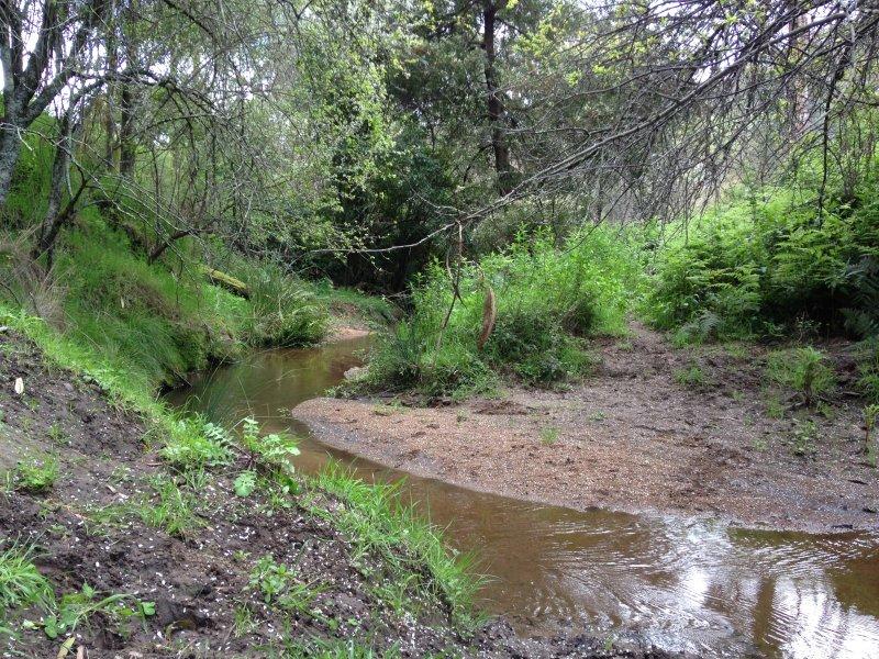 Lot 16A Davies & Whites Road(Separation Spur Track), Warrenbayne, Vic 3670
