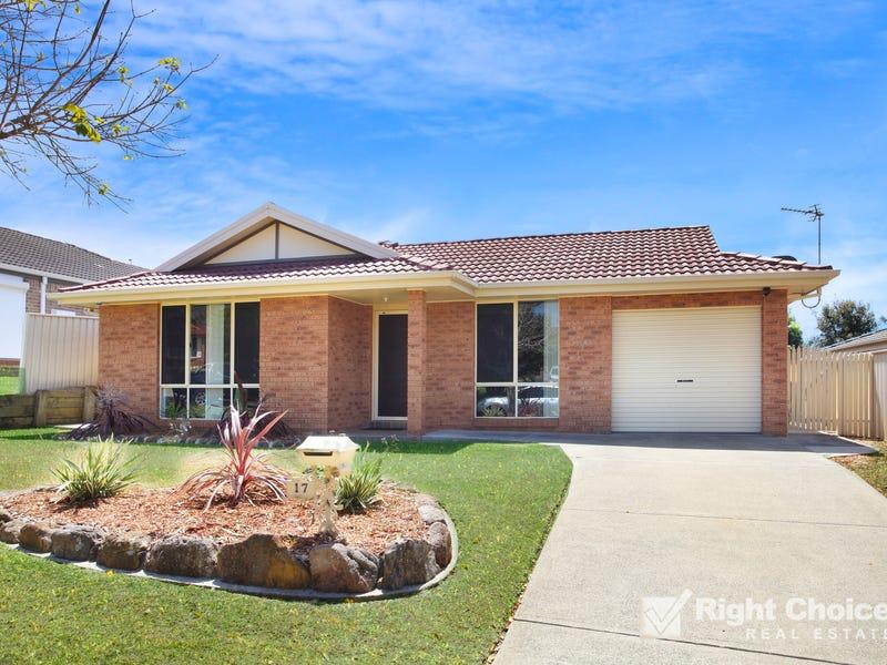 17 Brou Place, Flinders, NSW 2529