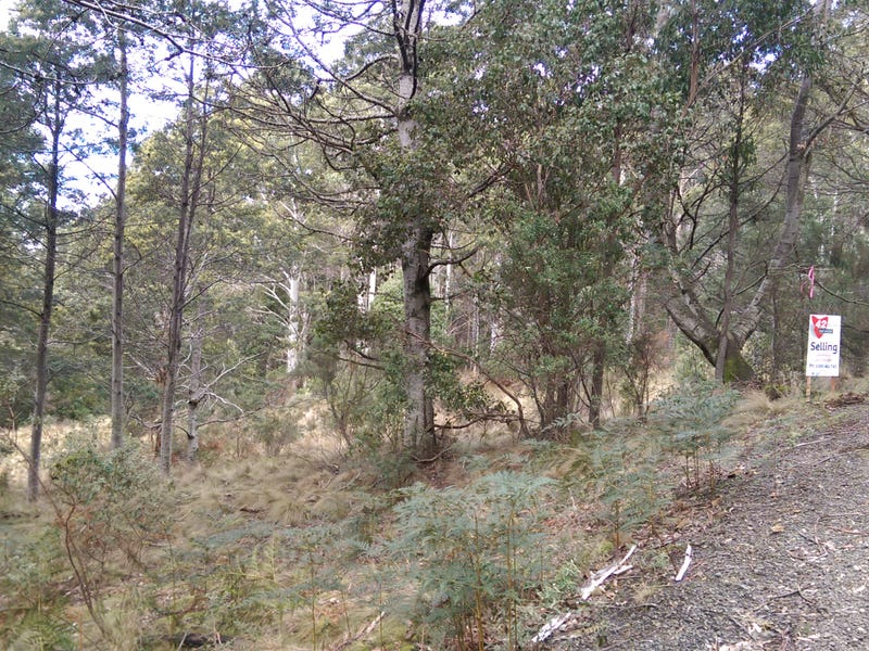 lot 2/600 Mount Barrow Rd, Nunamara, Tas 7259