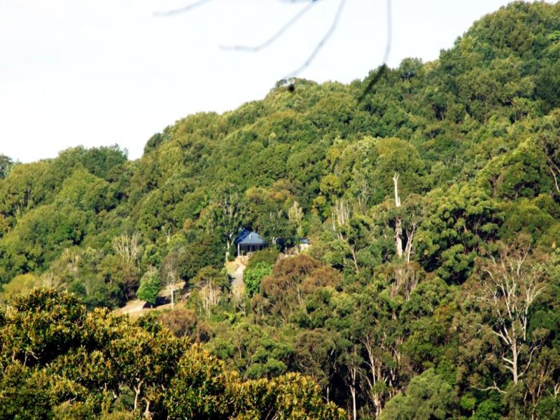 16 Camphor Laurel, Piggabeen, NSW 2486