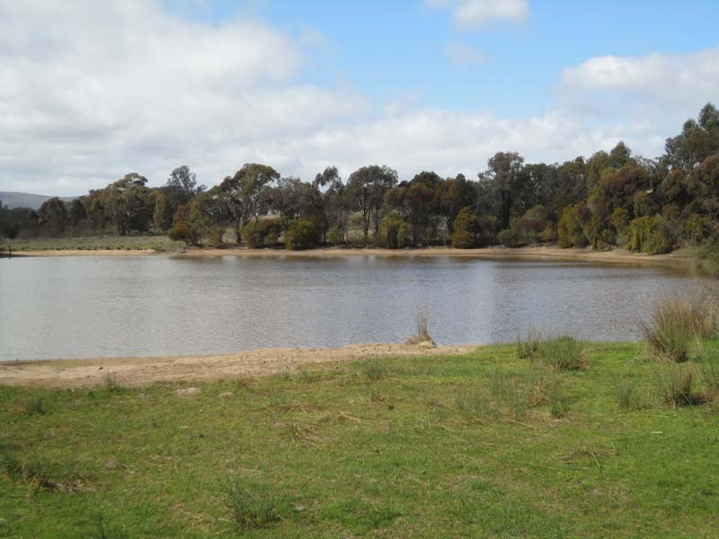Harrys Creek Road, Violet Town, Vic 3669