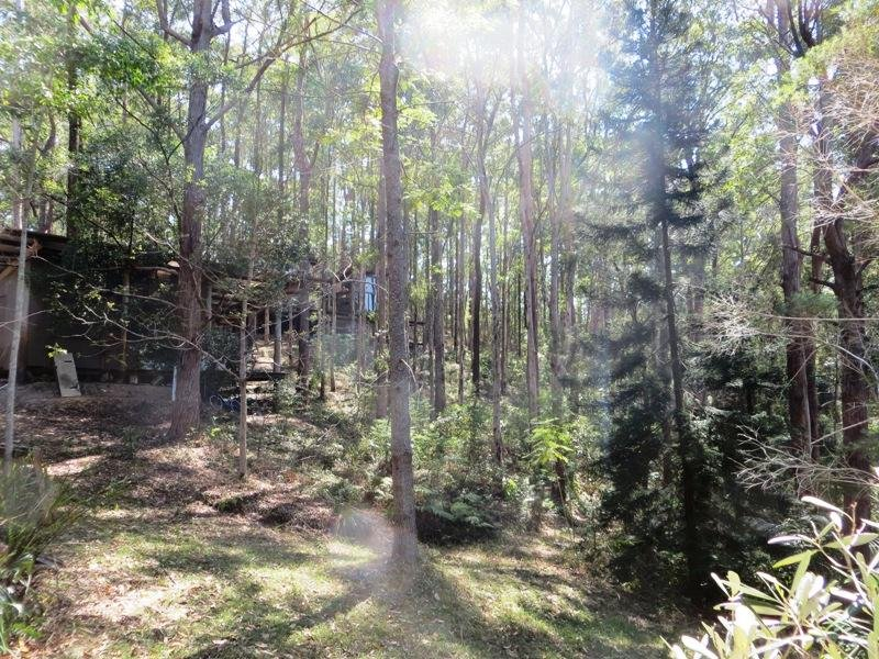 530 Newee Creek Road, Newee Creek, NSW 2447