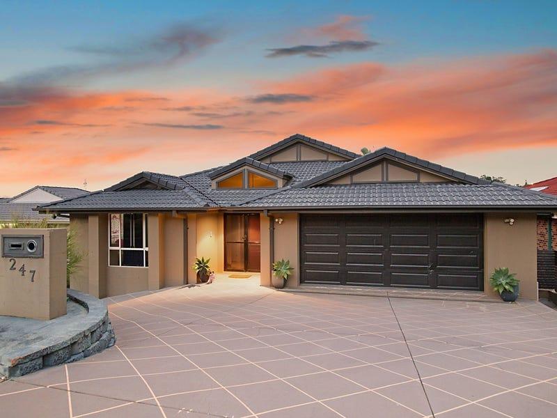 247 Darlington Drive, Banora Point, NSW 2486