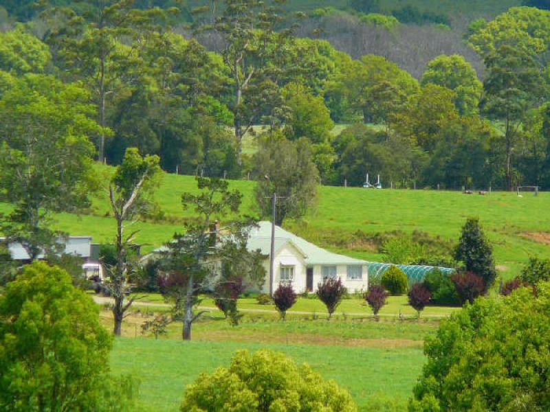 1 Gills Road, Lorne, NSW 2439