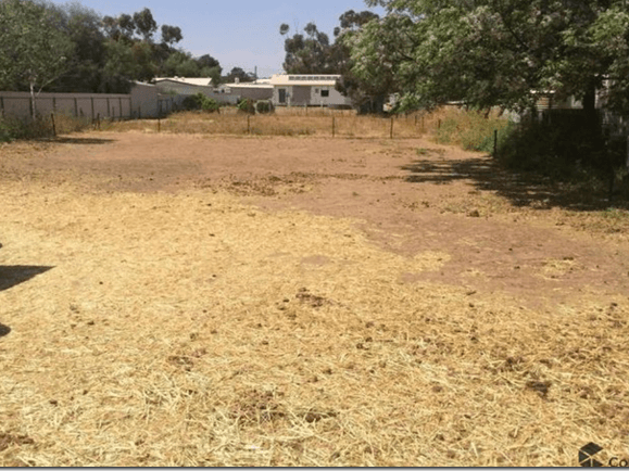 Lot 30 Melvin Terrace, Pinery, SA 5460
