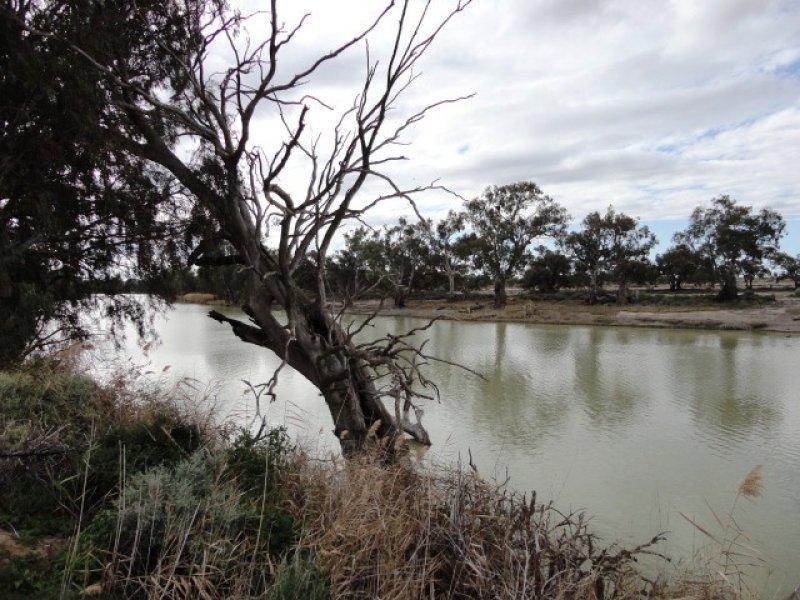 Lot 11 River Road, Pomona, NSW 2648