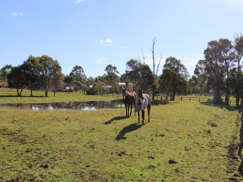 11 Brookfield Close, Jilliby, NSW 2259