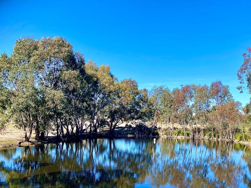 1613 SPRING RIDGE ROAD, Cobbora, NSW 2844