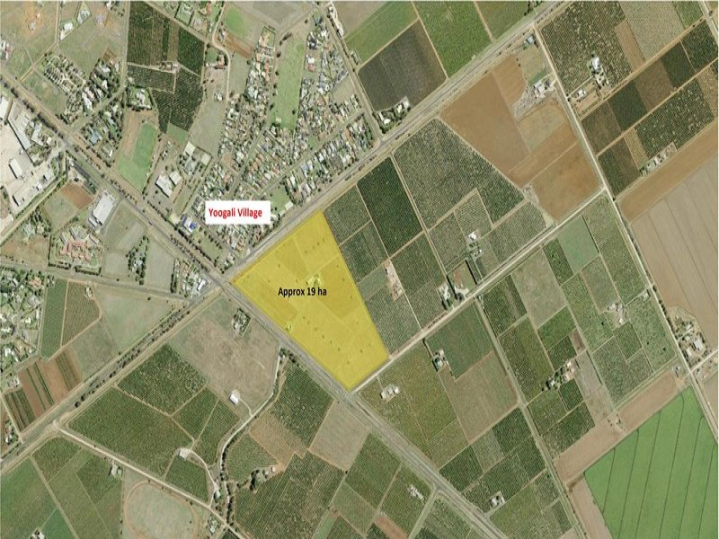 229 Leeton Road, Yoogali, NSW 2680