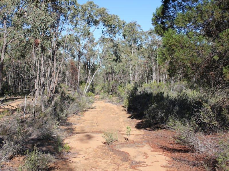 353 ALBERT WRIGHT ROAD, Rocky Glen, NSW 2357