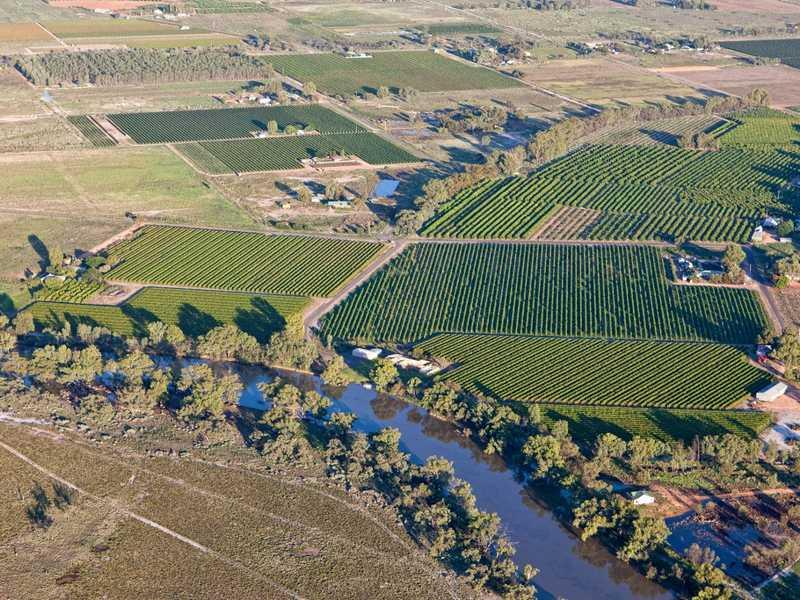 Clyne Family Properties, Pomona, NSW 2648