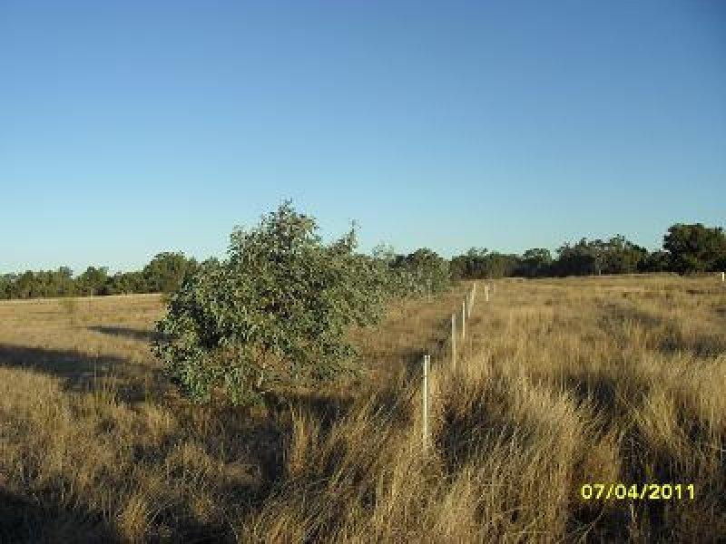 Thompsons Road, Gilgandra, NSW 2827