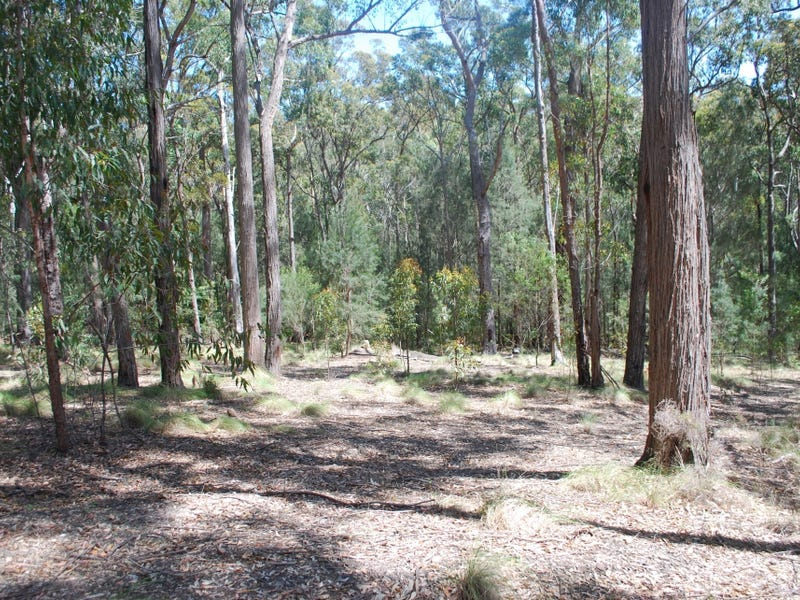 Lot 415 Millingandi Ridge Road, Millingandi, NSW 2549