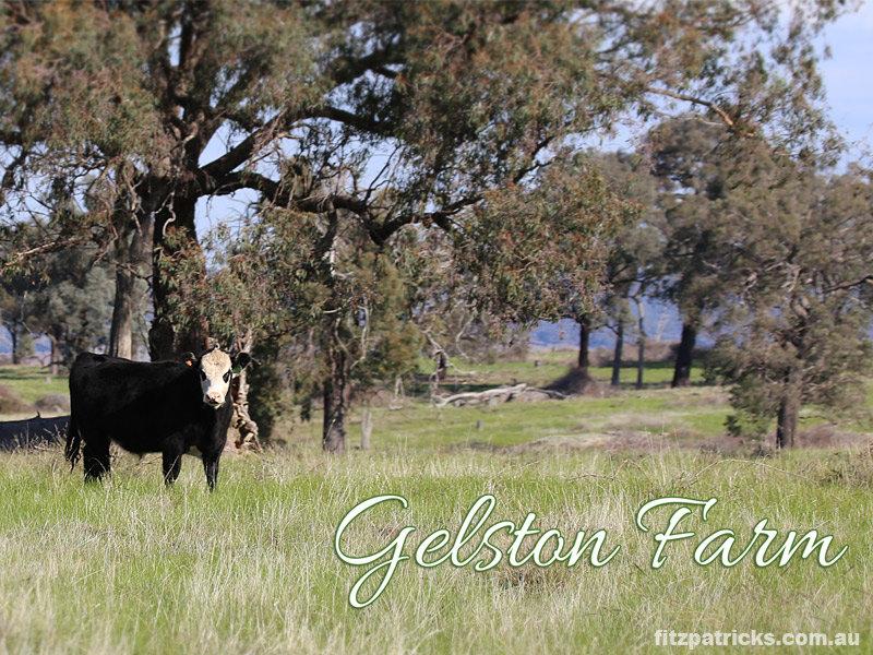 Gelston Park Road, Gelston Park, NSW 2650