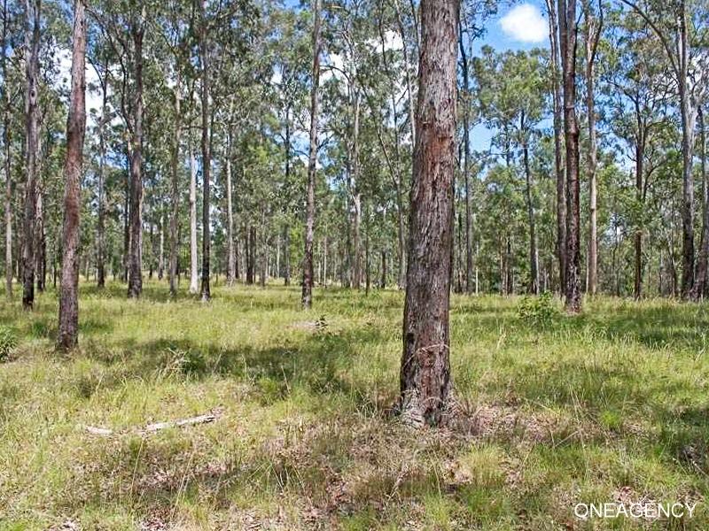 Lot 21 Bushland Drive, Yarravel, NSW 2440