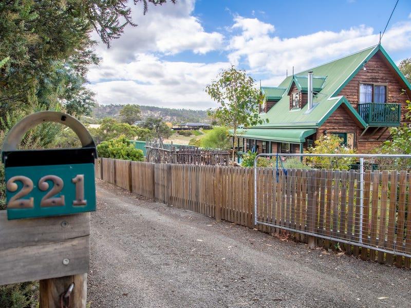 221 Briggs Road, Honeywood, Tas 7017