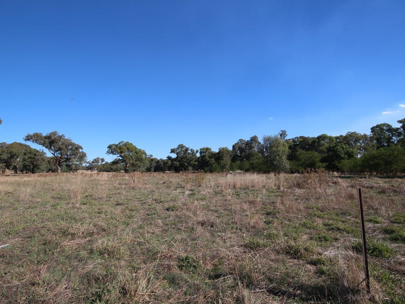 3005 Sturt Highway, Alfredtown, NSW 2650