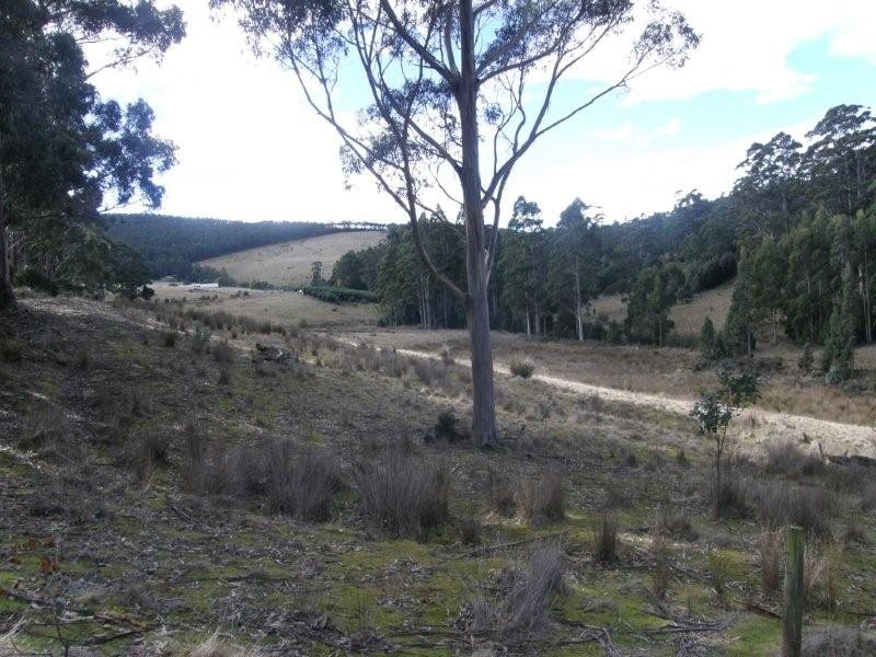 Lot 2 411 Woddbridge Hill Road, Woodbridge, Tas 7162