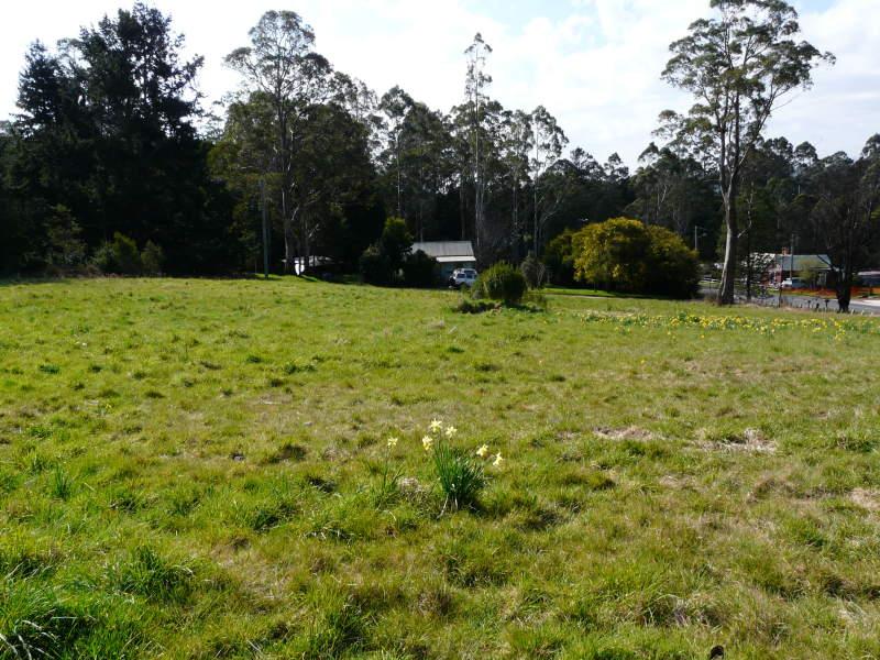 Lot 4, Lot 4 Mount Paris Dam Road, Weldborough, Tas 7264