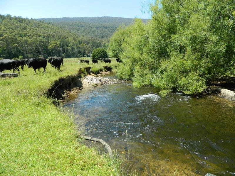 2540 Gordon River Rd, National Park, Tas 7140