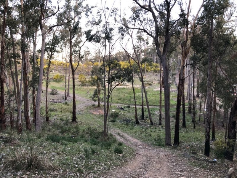 1261 Ten Mile Road, Deepwater, NSW 2371