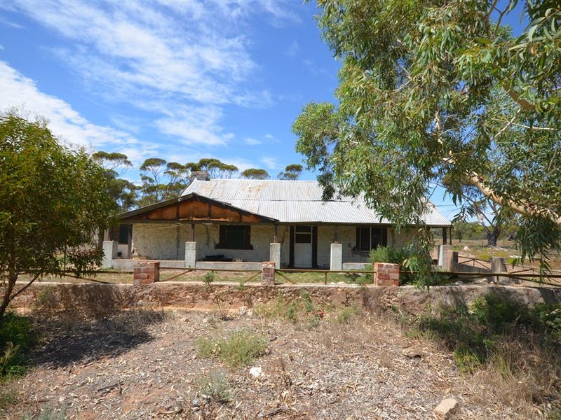 306 Lizzy Well Road, Galga, SA 5308