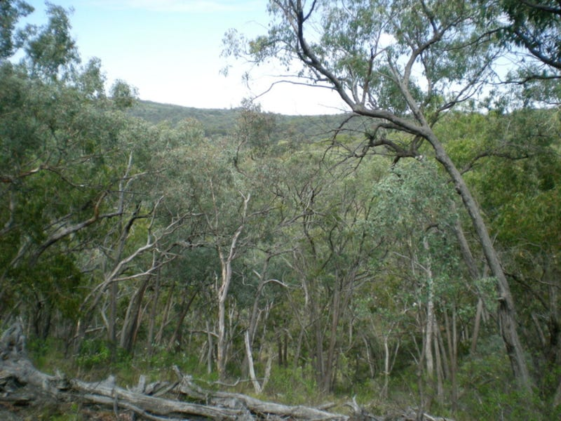 Lot 13, Mount Aquila Road, Stuart Town, NSW 2820
