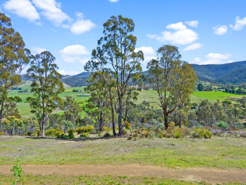 495 Clifton Vale Road, Elderslie, Tas 7030