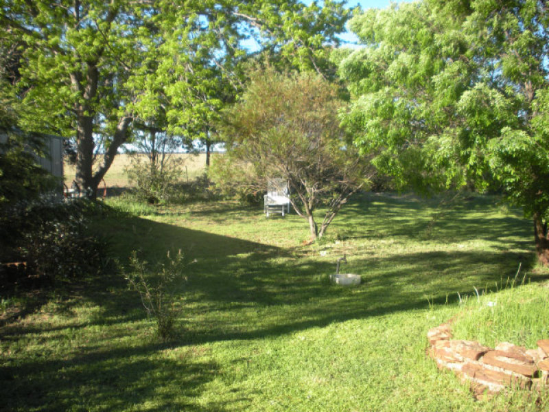 ARGYLE DOWNS, Trundle, NSW 2875