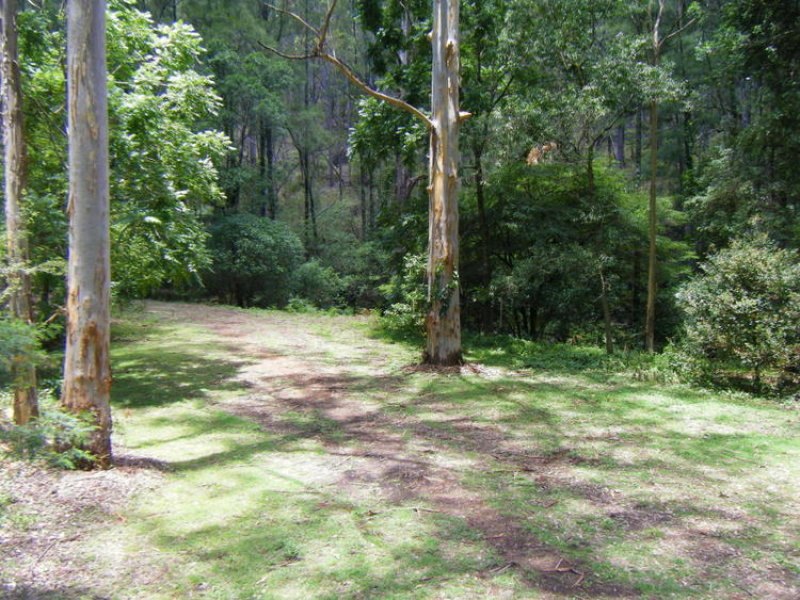 Lots 120 & 127 Goorangoola Creek Road, Goorangoola, NSW 2330