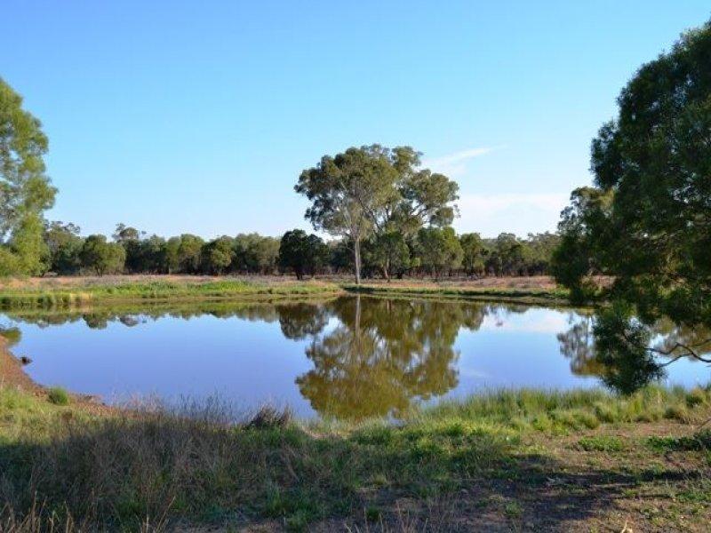 * Eltrune, Nyngan, NSW 2825