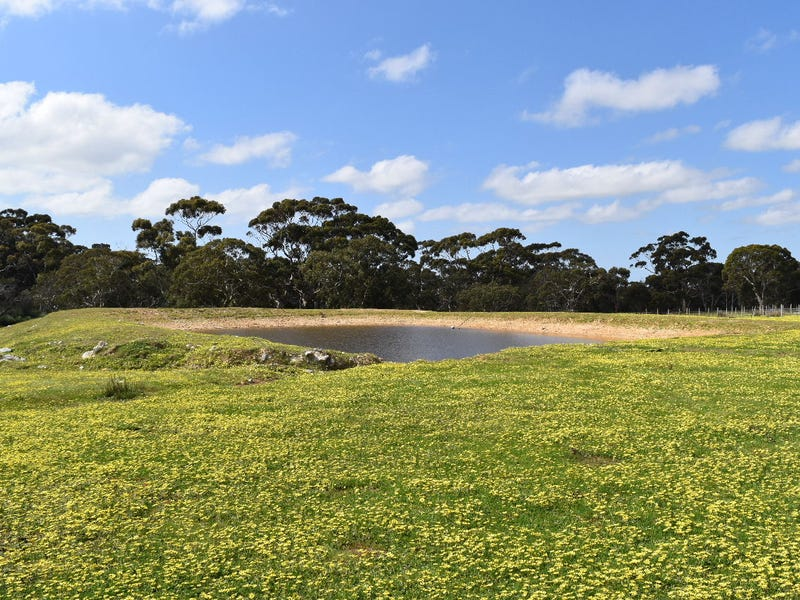 Lot 6 Bark Hut Road, Cassini, SA 5223