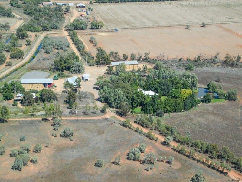 ". ""Boree Plain"", Benerembah, NSW 2680"