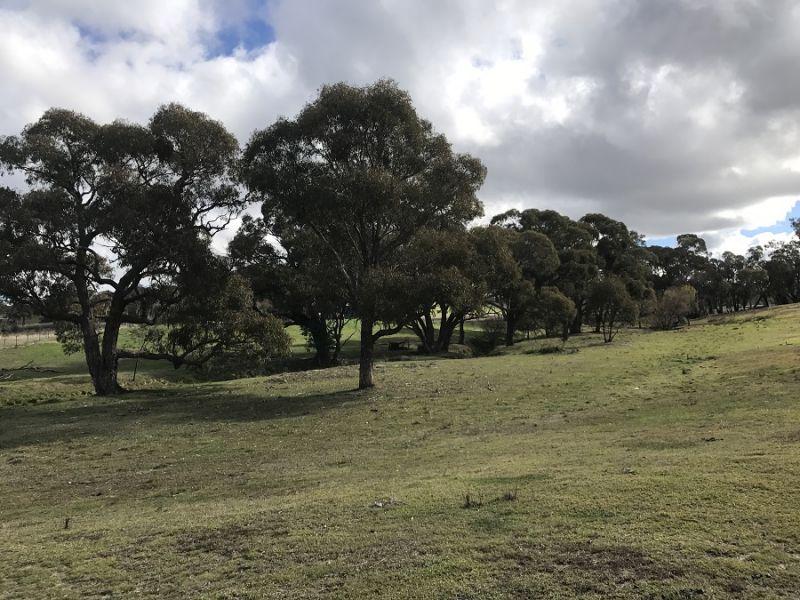 2728 Junction Point Rd, Binda, NSW 2583
