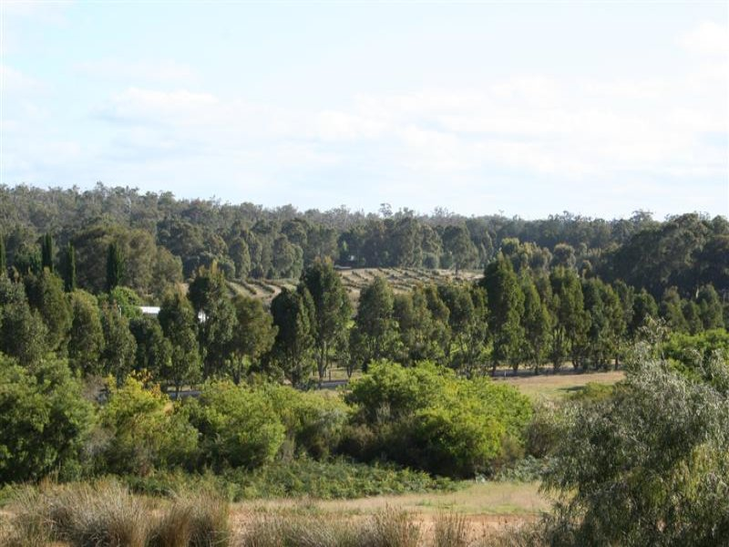 Lot 89 Vasse Highway, Nannup, WA 6275