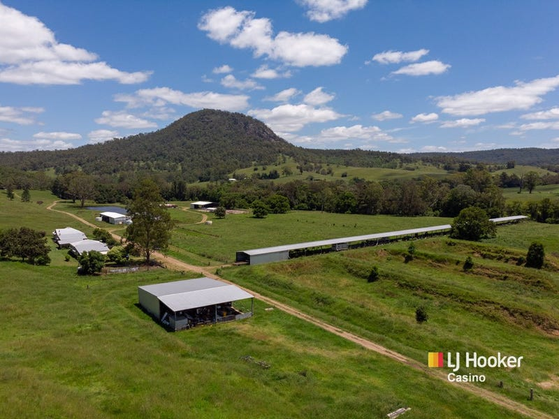 520 Capeen Creek Road, Old Bonalbo, NSW 2469