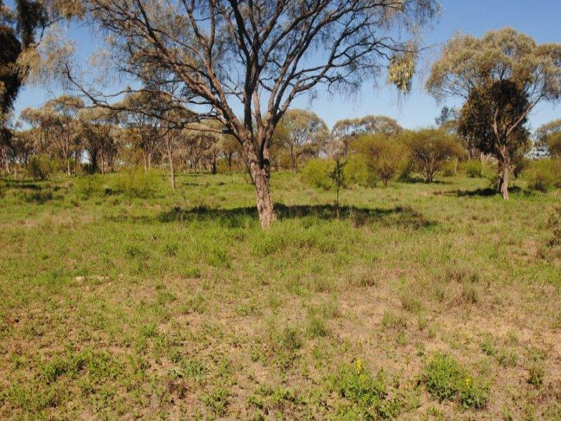 Barcaldine Acreage For Sale, Barcaldine, Qld 4725
