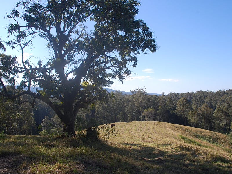 3 DP601640, 165  Richards Road, Newee Creek, NSW 2447