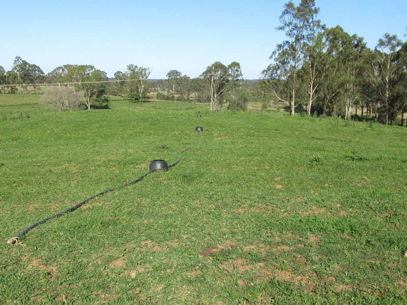 LOT 177 Waterloo Hall Rd, Waterloo, Qld 4673