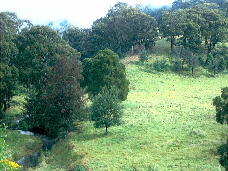 Lot 1, Traralgon Creek Road, Koornalla, Vic 3844
