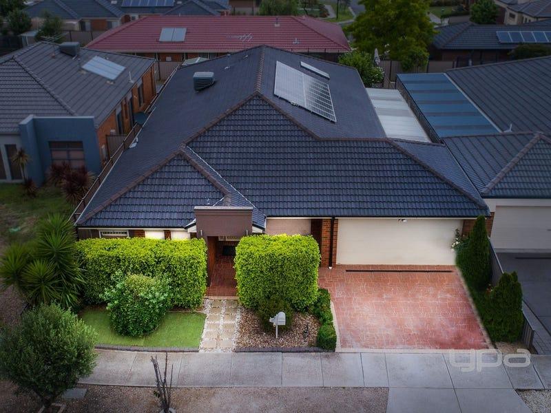 25 Wills Terrace, Burnside Heights, Vic 3023
