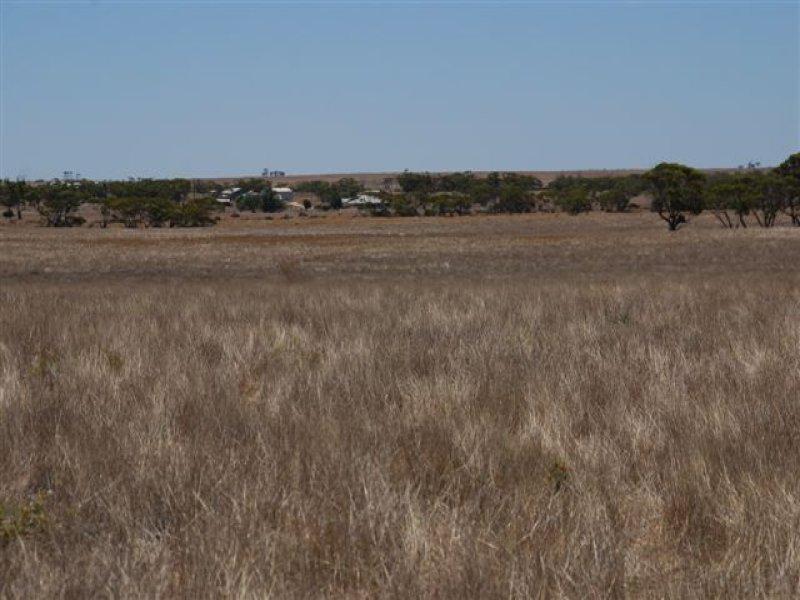 Yantanabie, Wirrulla, SA 5661