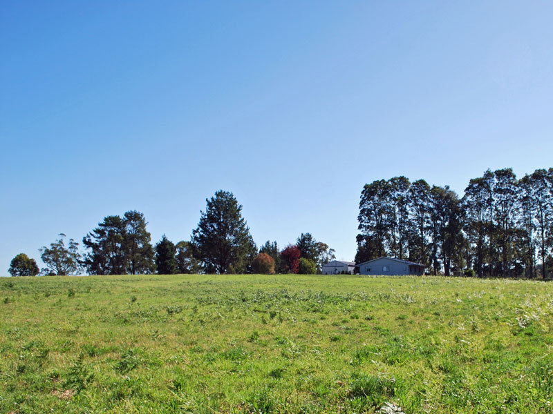 134 Euloo Rd, Peats Ridge, NSW 2250
