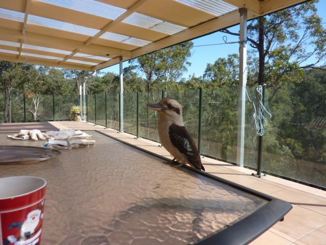 89 Roberts Creek Road, Blaxlands Ridge, NSW 2758