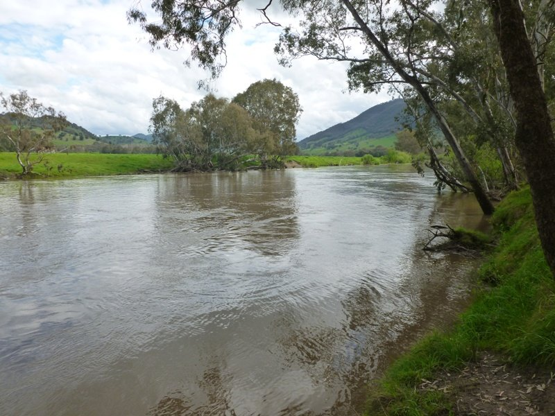 River Road, Jingellic, NSW 2642
