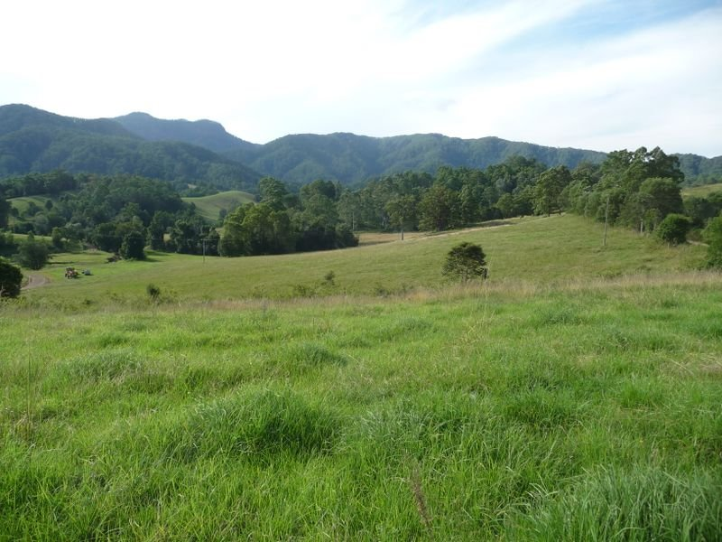 Lot 102 Comboyne Road, Killabakh, NSW 2429