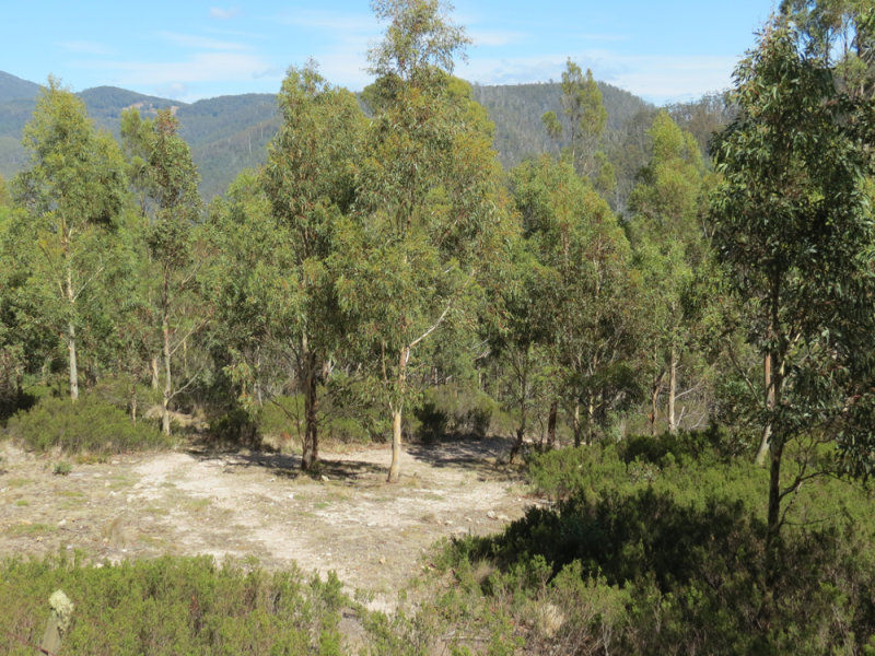 Lot 13 Brinckmans Road, Glenlusk, Tas 7012