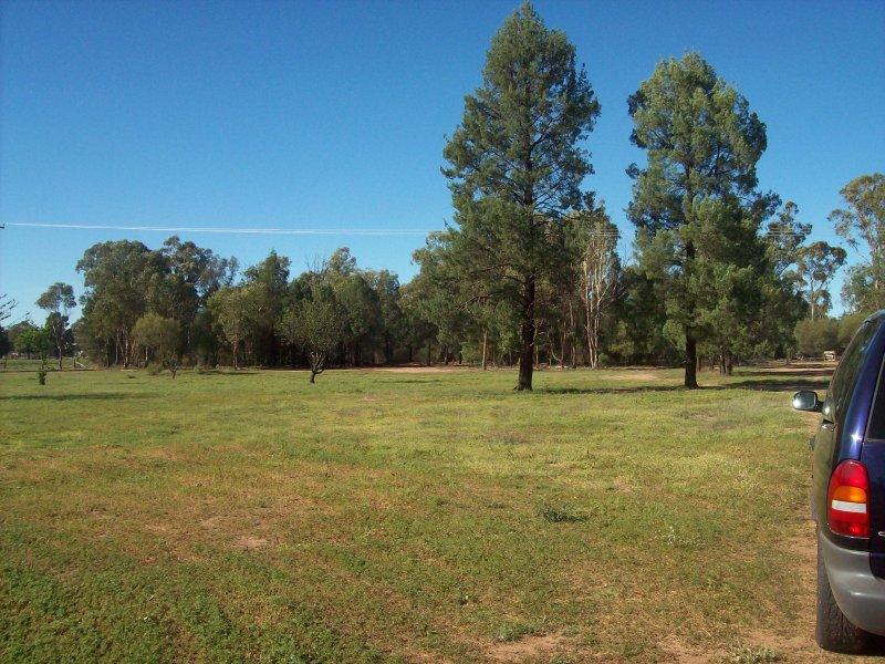 115 Warren Road, Gilgandra, NSW 2827